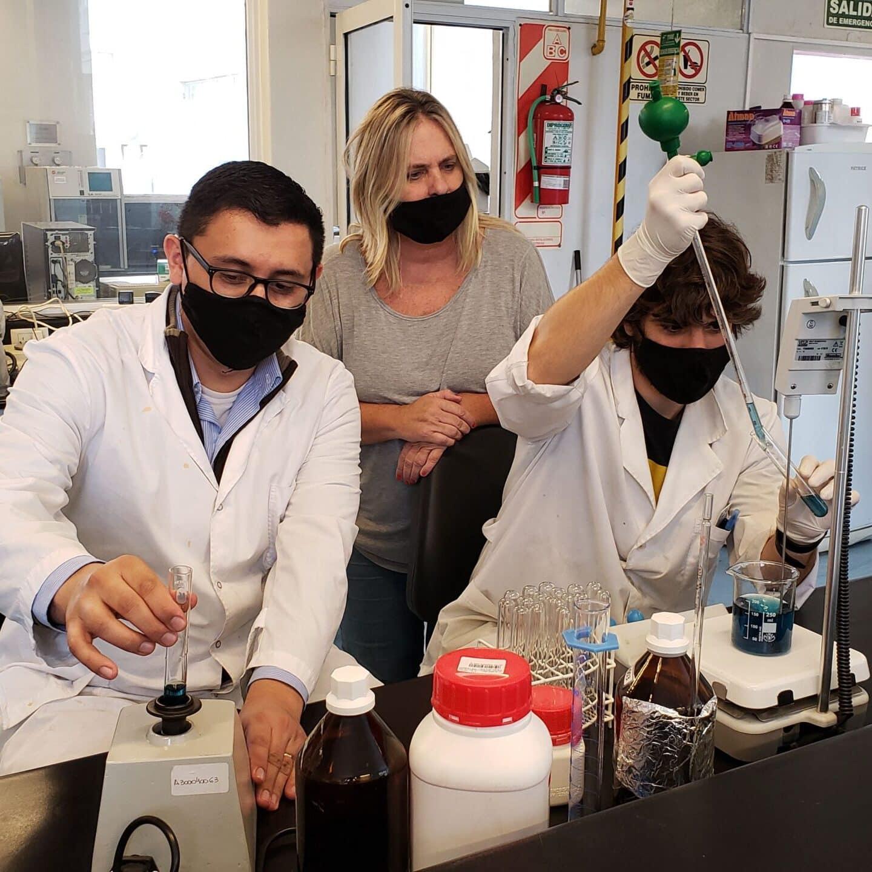 Proyectos de Investigación ITBA Desarrollo de materiales sustentables para eliminar mar metales del agua